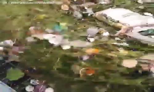 Denizdeki Atıkları ve Çöpleri Toplayan Akıllı Mucizevi Makine