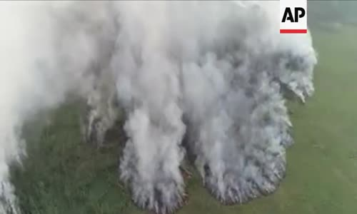 Sibirya sıcak hava dalgasının ortasında orman yangınları