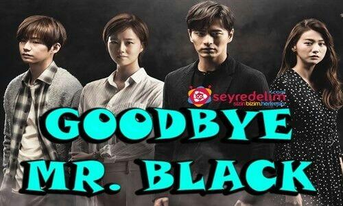 Goodbye Mr. Black 8. Bölüm İzle