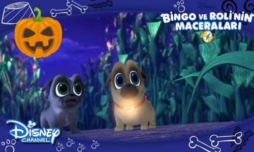 Bingo ve Roli'nin Maceraları - Bingo Tasmasını Kaybediyor