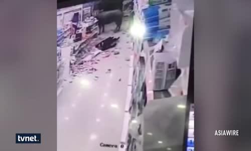 Süpermarkette Boğa Dehşeti : Hamile Kadına Böyle Saldırdı