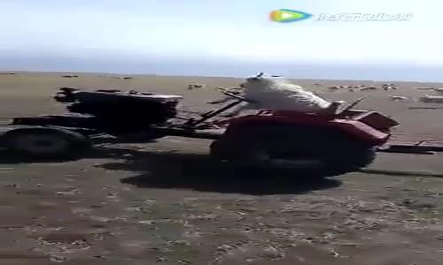 Traktör Süren Keçi