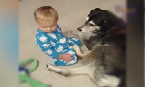 Süper Komik Bebek Video Derleme (2017) (HD) Komik Bebek Videoları