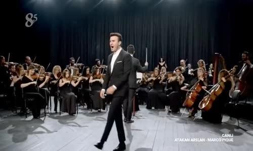 Avatar Atakan Arslan VS Marco Pique Altin Kemer Boks Karsilasmasi