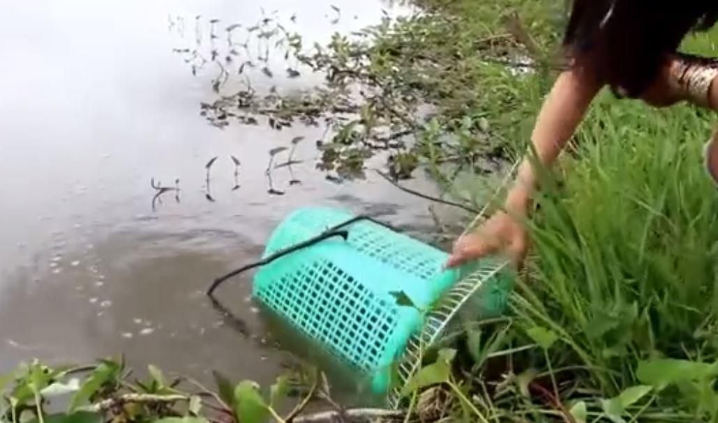 Vantilatör Kapağı  İle  Balık Yakalayan Kadın