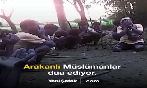 Myanmar Arakanlı Müslümanları  Terörist  İlan Etti