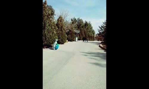 Seyredelim Gaziantep Hayvanat Bahçesinde