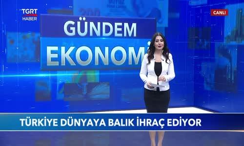 Türkiye Levrek ve Çipurada Dünya Lideri