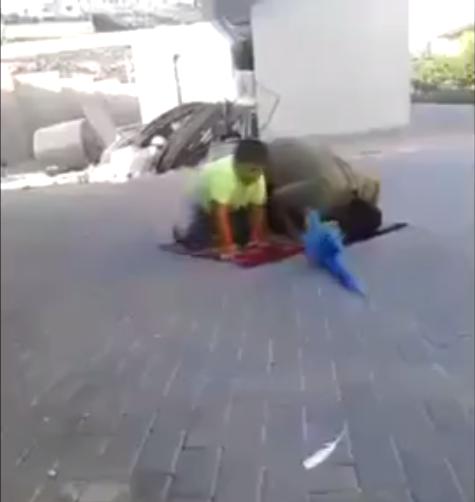 Papagan Namaz Kilan Cocuk Kavgasi Seyredelim Com