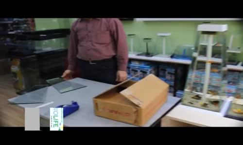 Biolife  Nano Akvaryum Yapımı