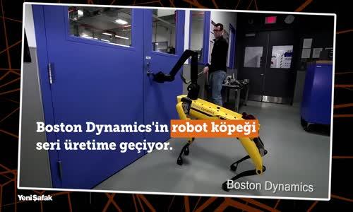 Boston Dynamics'in Robot Köpeği Seri Üretime Geçiyor