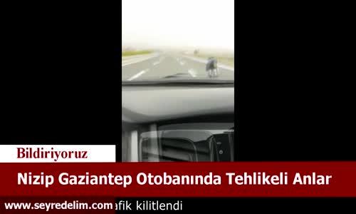 Nizip Gaziantep Otobanında Tehlikeli Anlar