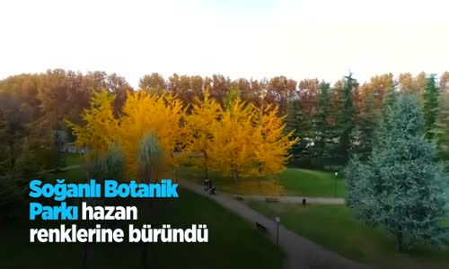 Soğanlı Botanik Parkı Hazan Renklerine Büründü
