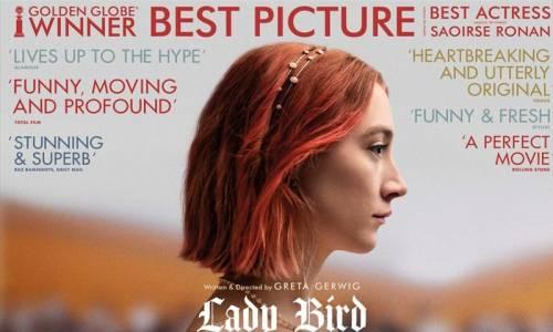 Uğur Böceği - Lady Bird Türkçe Dublaj İzle