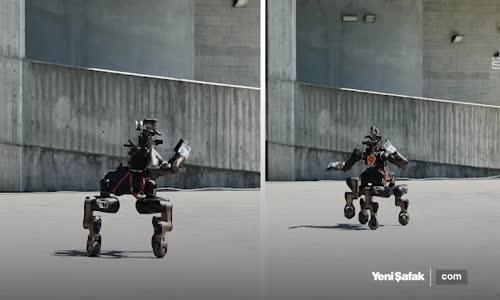 Karateci Robot Görenleri Şaşkına Çeviriyor