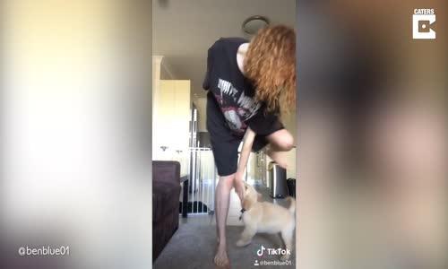 Sahibinin Twerk Yapmasını İstemeyen Köpek