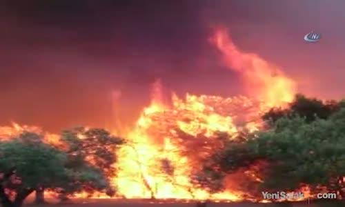 Çanakkale'de Dev Orman Yangını