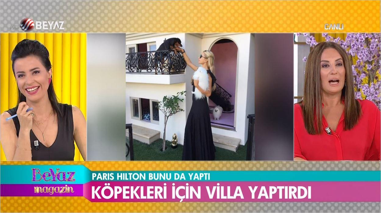 Hilton Köpeklerine Havuzlu Villa Yaptırdı - İşte Maliyeti